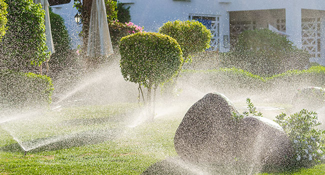 Are high-tech home irrigation systems worth it?